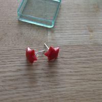 Vundne stjerneørestikkers