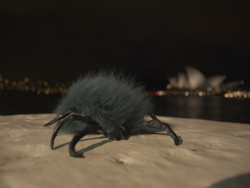 Pelle Flåt foran operahuset i Sydney.