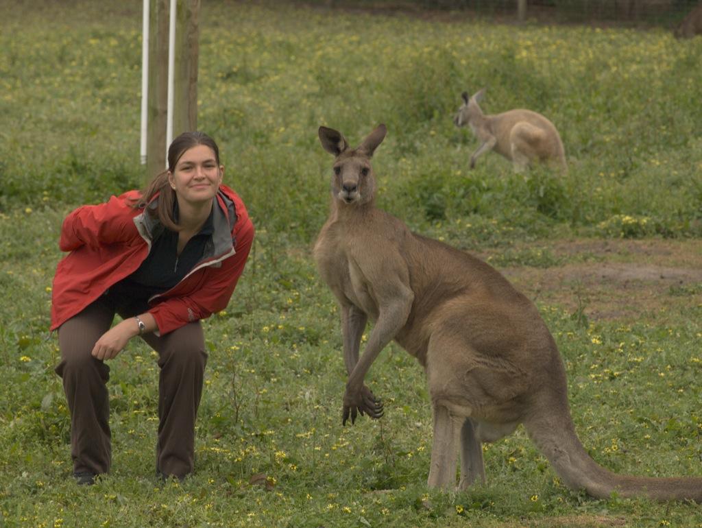 Mig sammen med en stor kænguru.
