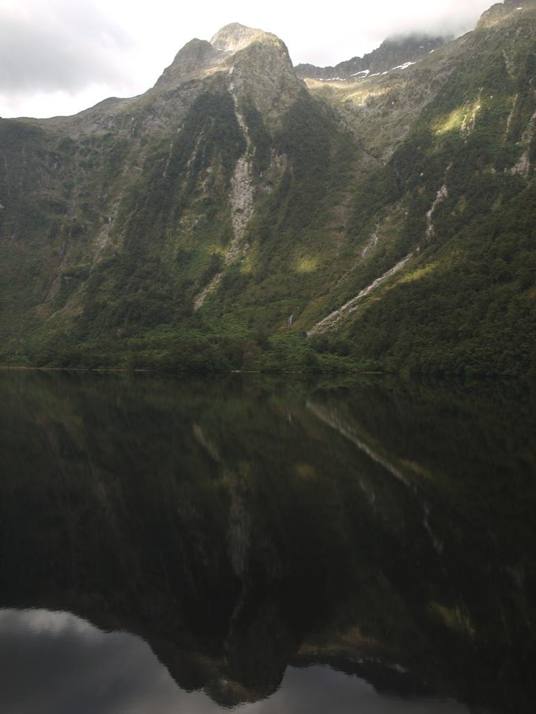 Doubtful Sound med spejlbillede.