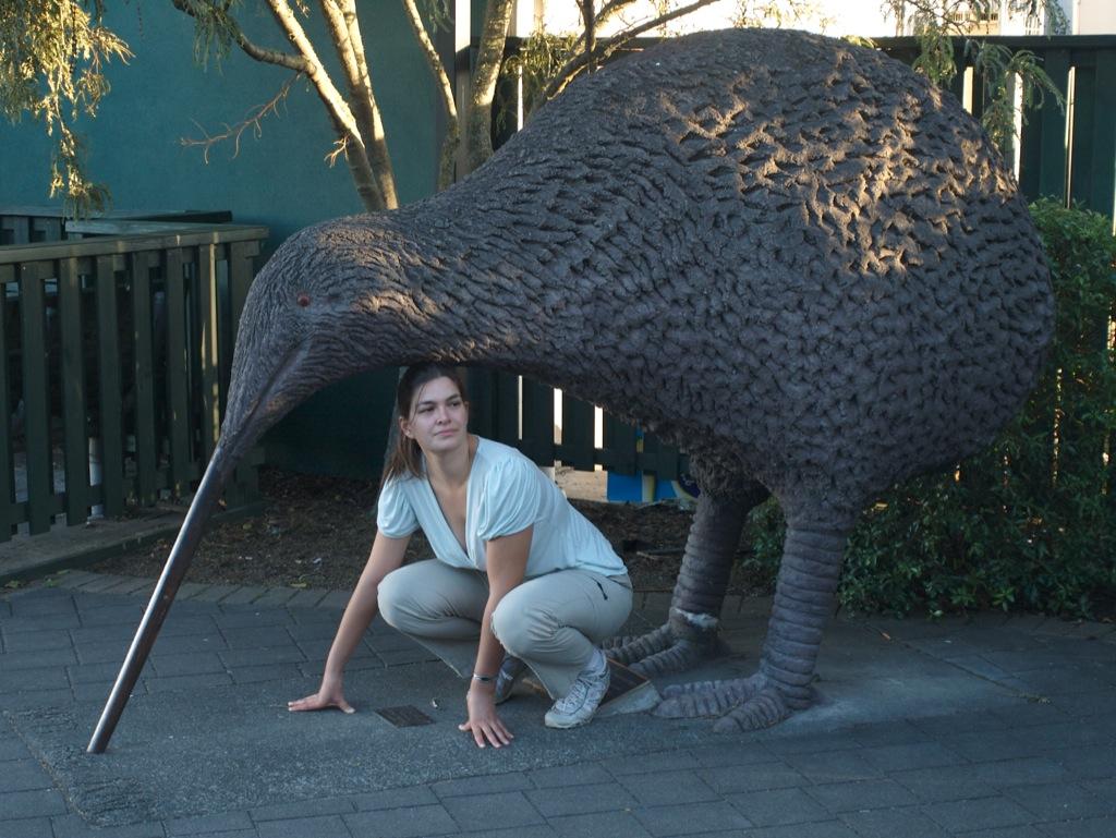 Mig under en af de 2 kiwier, der var opstillet i byen Otorohanga.