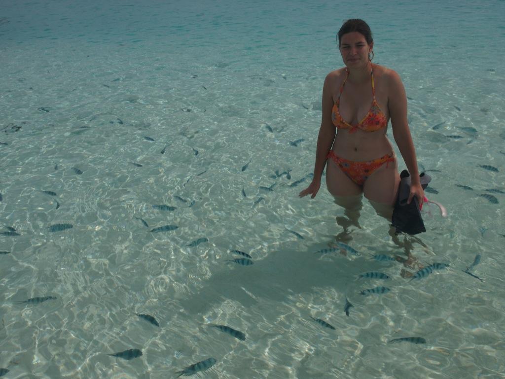 Mig sammen med en flokfuld sergentfisk ved Aitutaki.