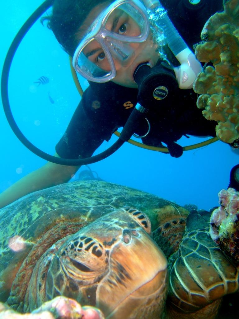 Mig sammen med en skildpadde i Aitutaki.