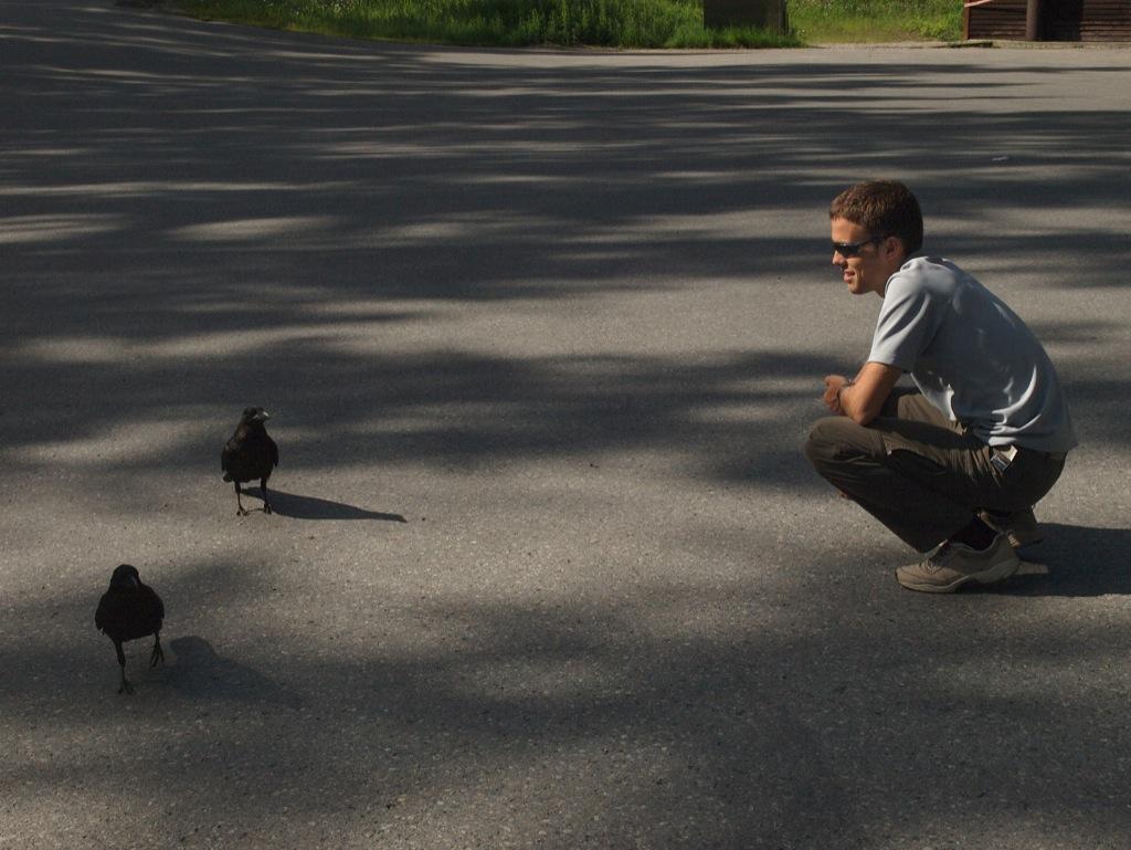 Anders snakker med krager.