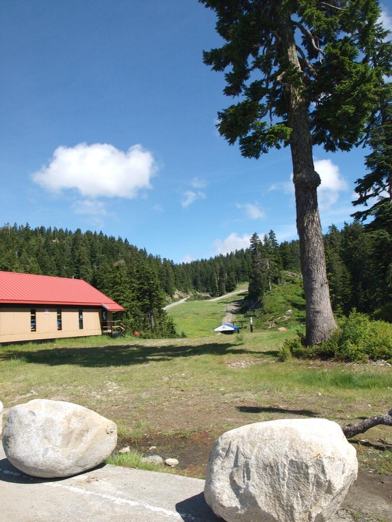 Mount Seymour om sommeren.