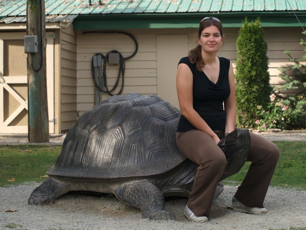 Jeg sidder på en skildpadde - godt den var af metal.