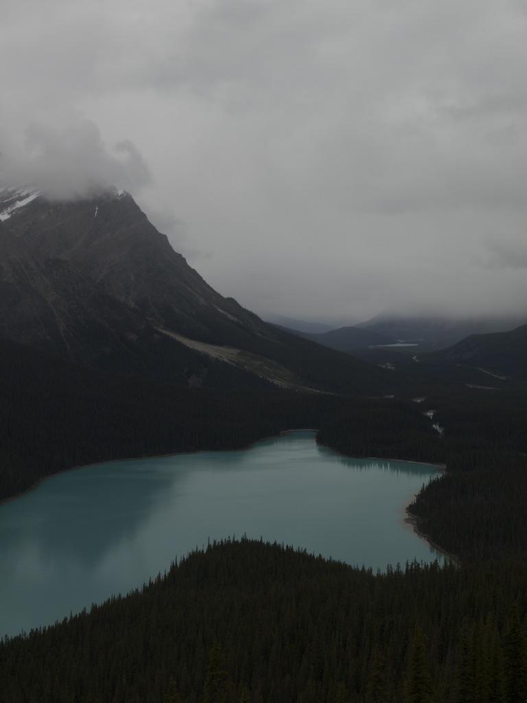 Bow Lake fra Bow Summit.