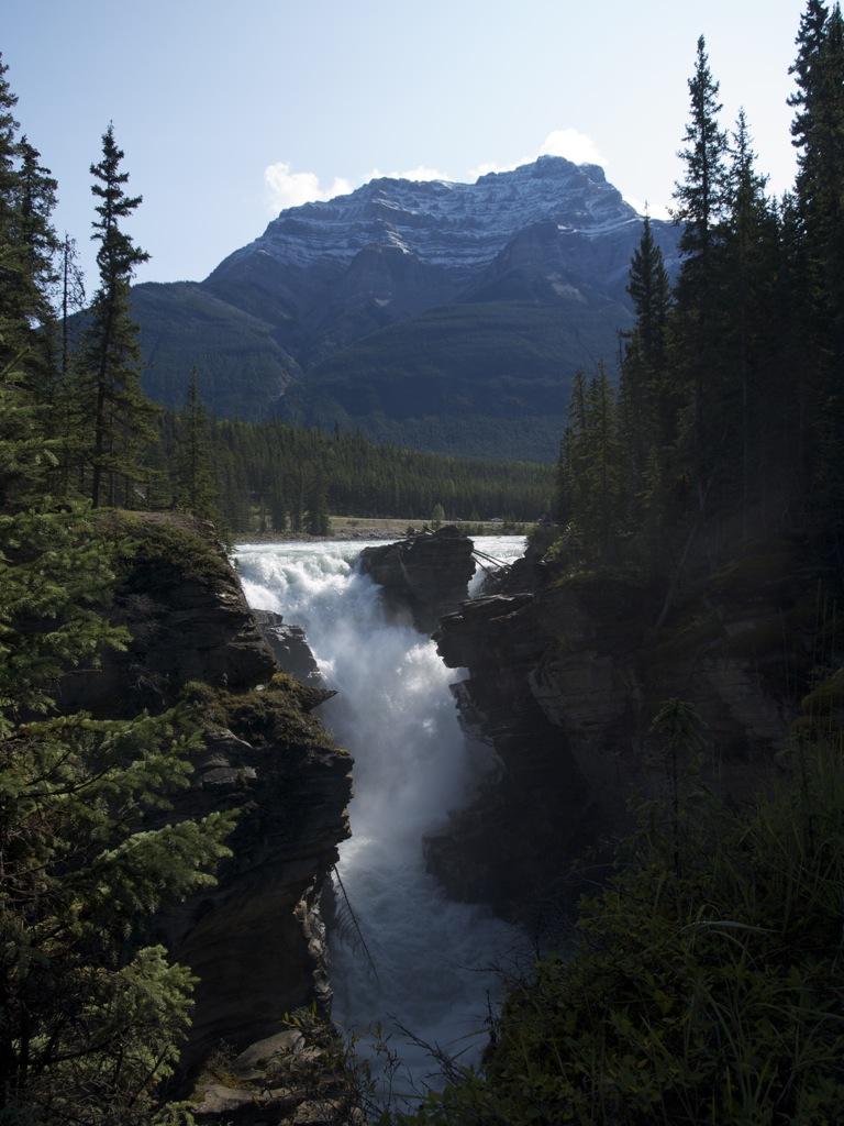 Athabasca Falls med bjerge i baggrunden.