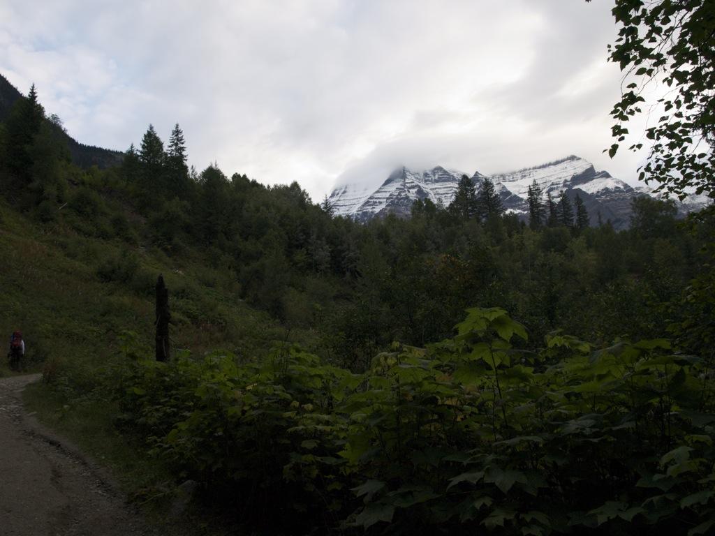 Mount Robson ses i baggrunden; der skal vi op.