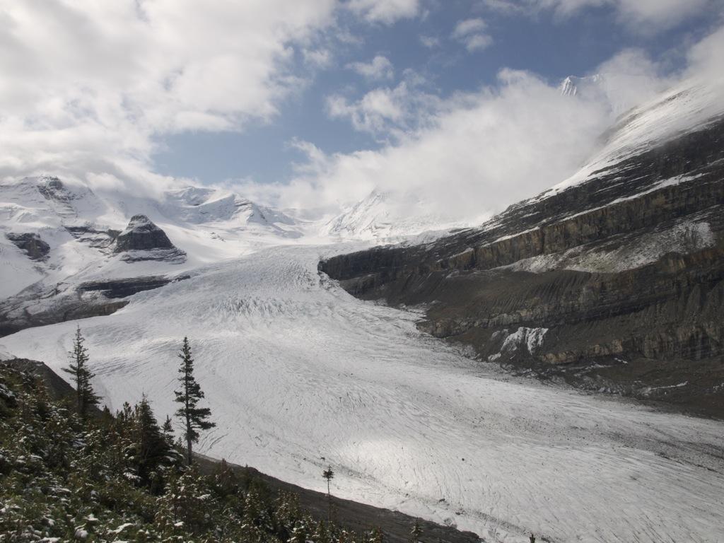Robson gletcheren foran Mount Robson.