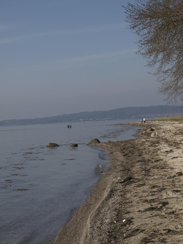 Ved vandet i Skibelund.