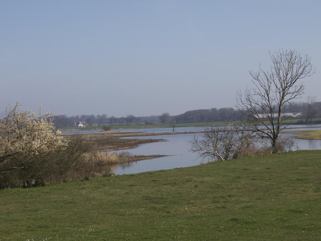 Søen, der nu igen kan få lov til at stå uberørt hen.