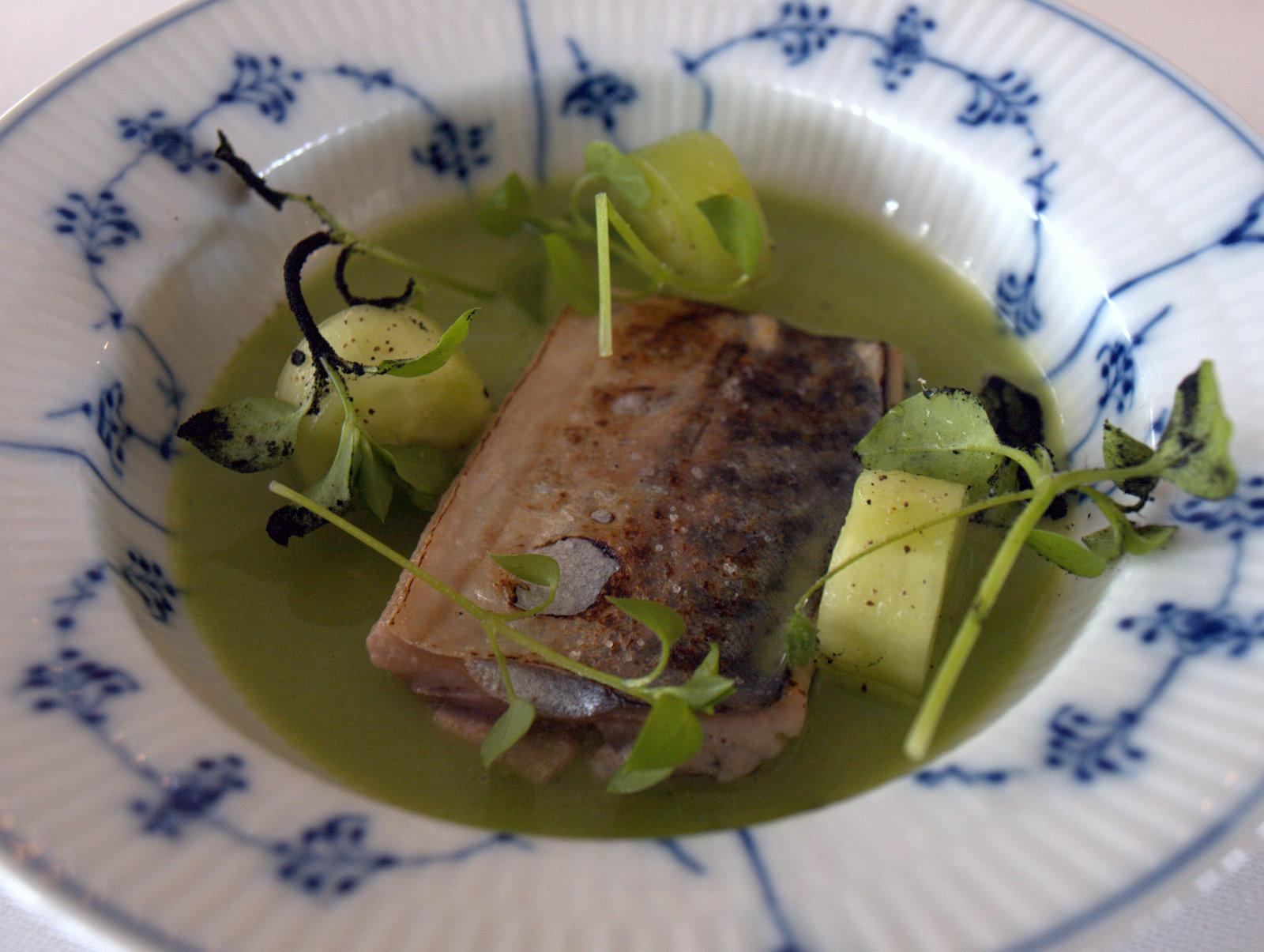 Grillet makrel, agurk og brændt hvidløg