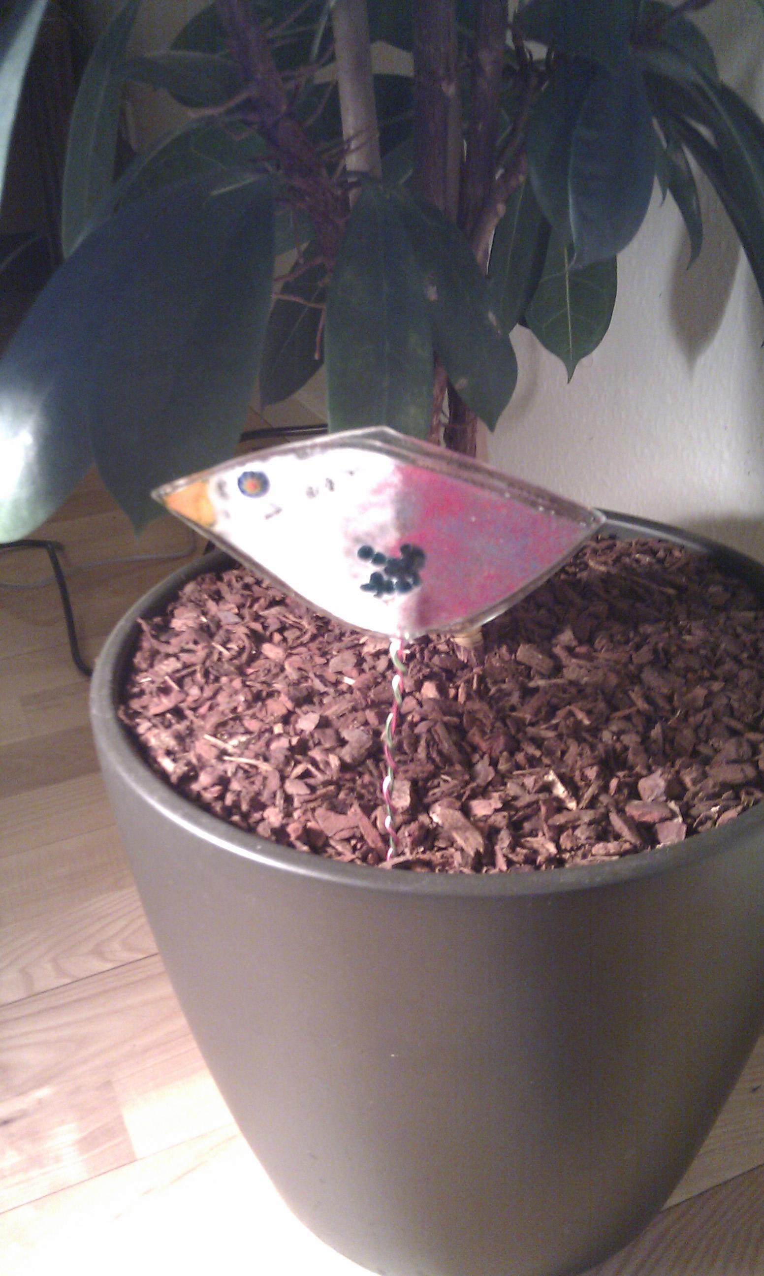 En lille glasfugl